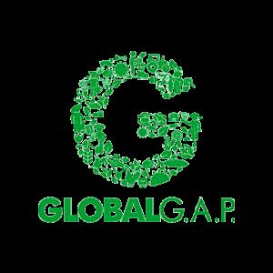 global-gap-transparent